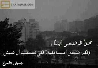 ببساطه هكذا نحن نعيش Arabic Quotes Cool Words Sweet Words