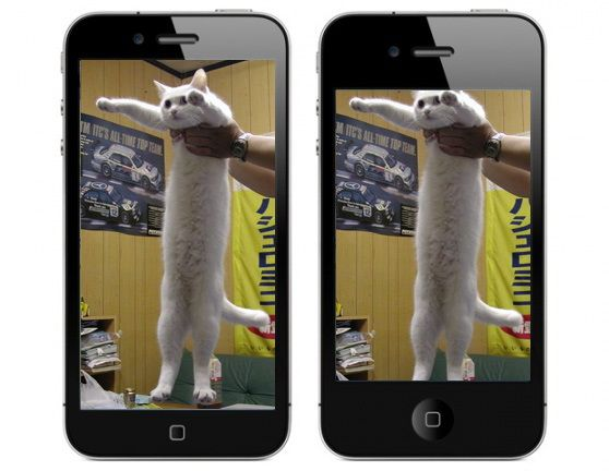 The difference between iPhone 4 and iPhone 5 explained in one image
