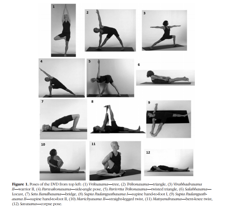Image Result For 12 Yoga Poses For Osteoporosis Yoga Postures Yoga Help Bone Health