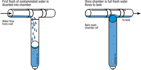 Rainwater Collection Systems 101 Faqs Homestead And Chill In 2020 Rain Barrel Rain Water Collection System Rain Water Collection
