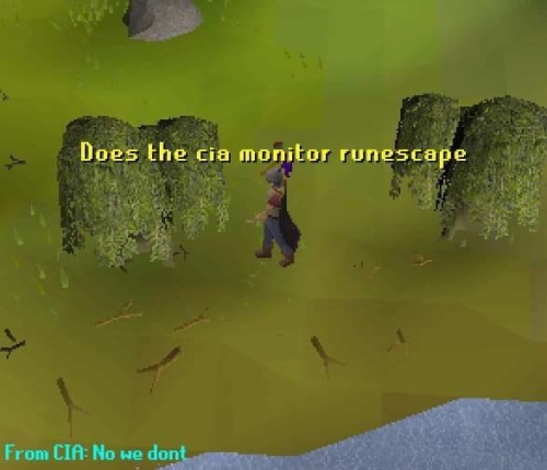 Runescape Memes With Images Stupid Funny Memes Old School
