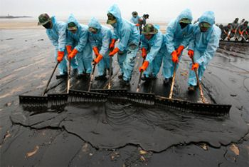 Oil Spills Sad But True Random Stuff Things That Can T Fit Into My Other Boards Bp Oil Oil Spill Oil Spill Clean Up