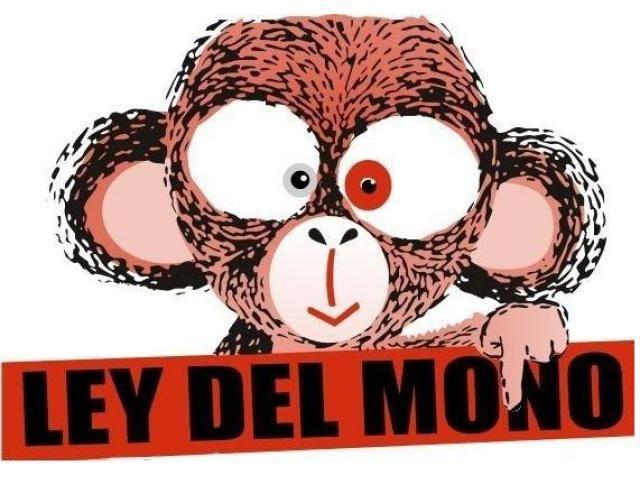 Resultado de imagen para ley del mono chile