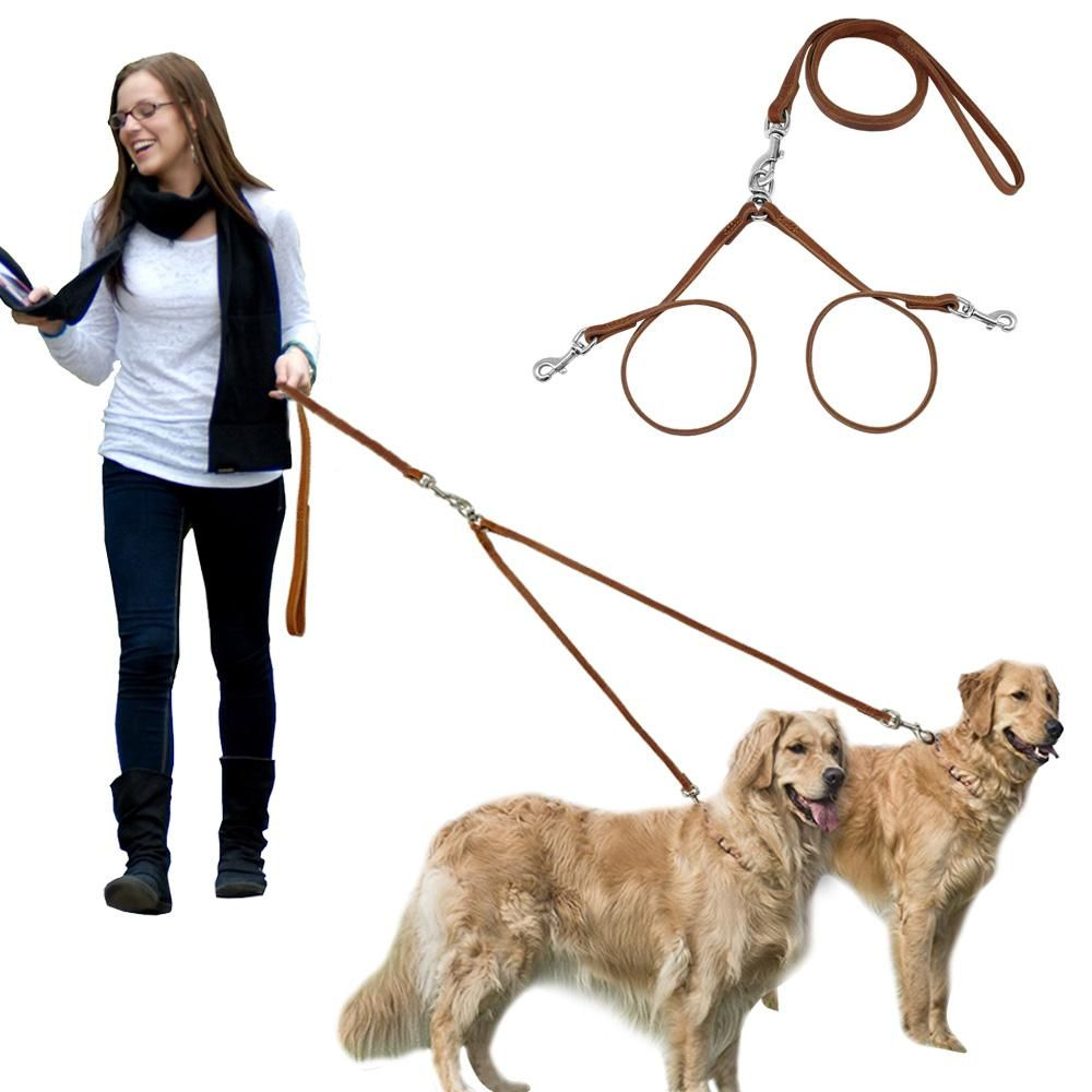 If You Are A Retailer And Looking For Wholesale Pet Supplies In