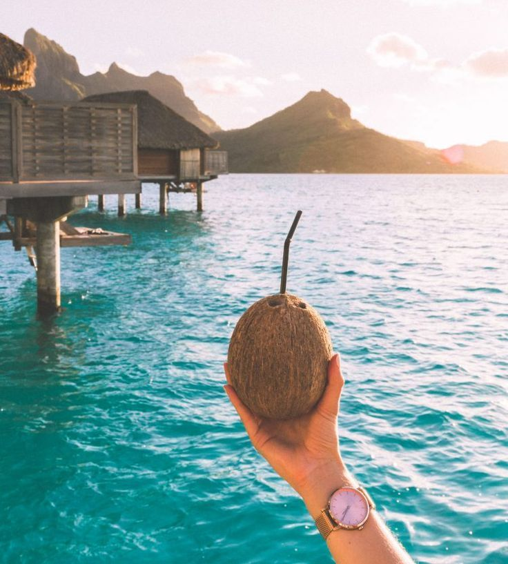 Coconuts And A View At Sunset In Bora Bora Tahiti For Our