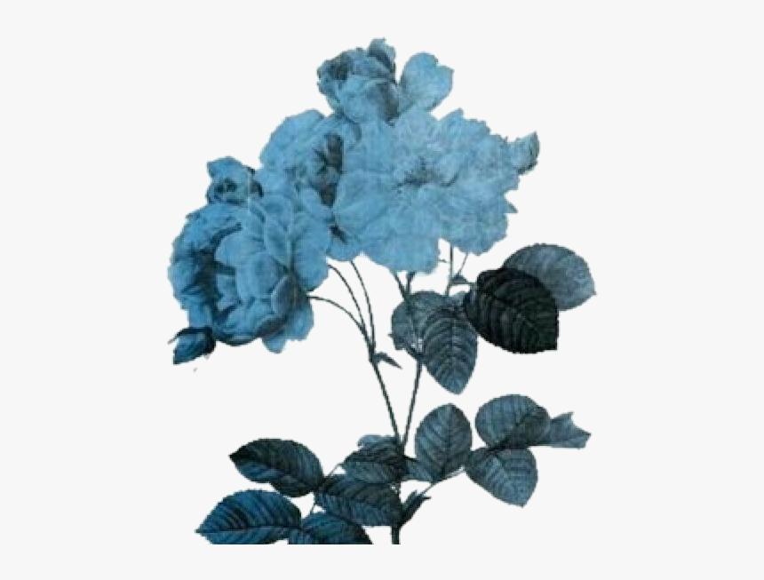 Blue Aesthetic Png Blue Aesthetic Tumblr Blue Aesthetic Blue Aesthetic Pastel