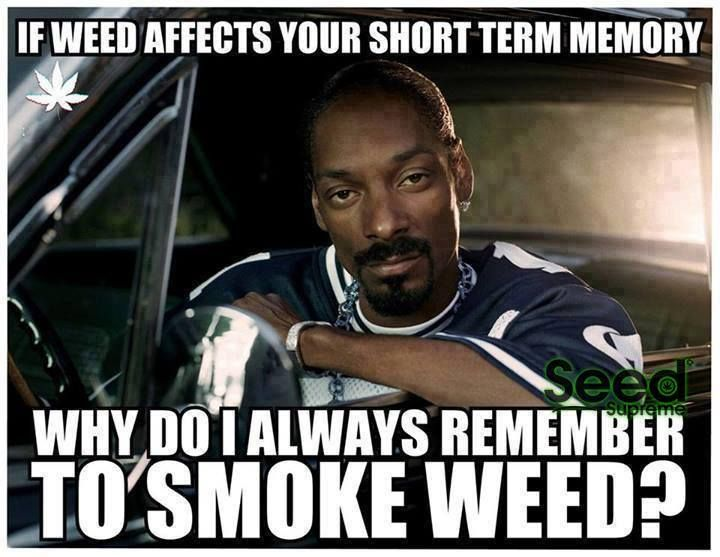 Best Snoop Dogg Quotes: If Weed Affects Your Short Term Memory