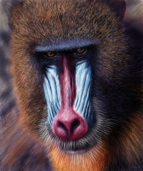 Something In the look by Samy Halim - Digital Illustration