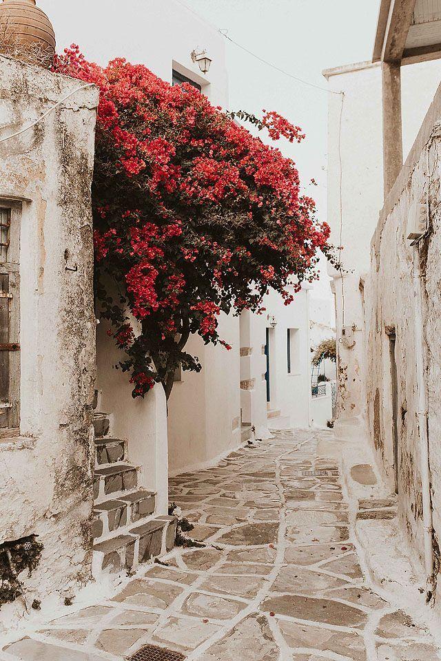 My Trip To Paros | Bella Bucchiotti #wanderlust Blogger Bella Bucchiotti of xoxo…