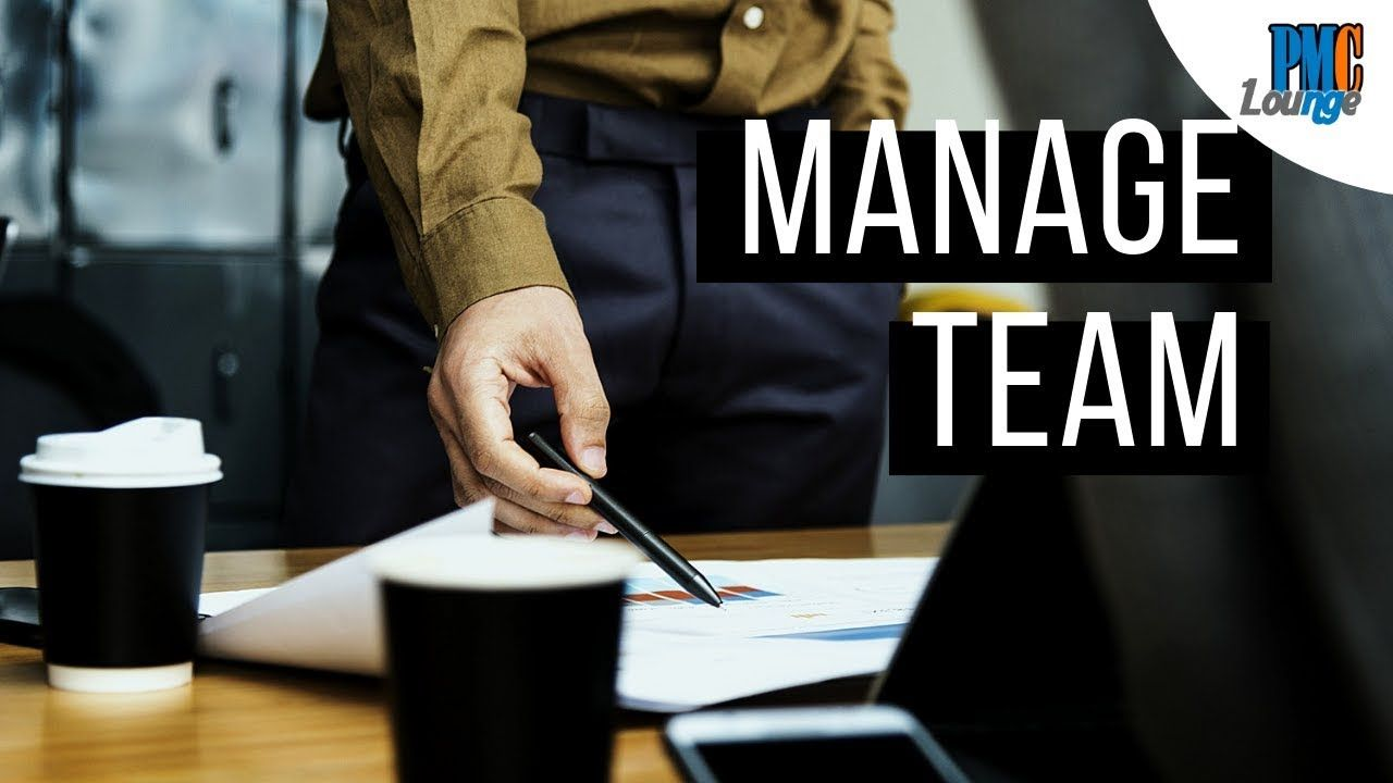Manage Team Process Project management professional