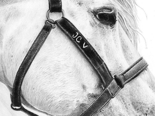 Mon Cheval Blanc Un Cheval De Reve Horses Animals Personalized Items