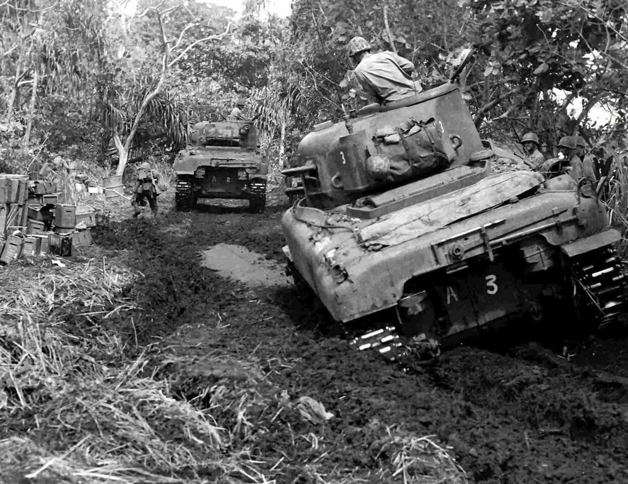 Sherman e giungla