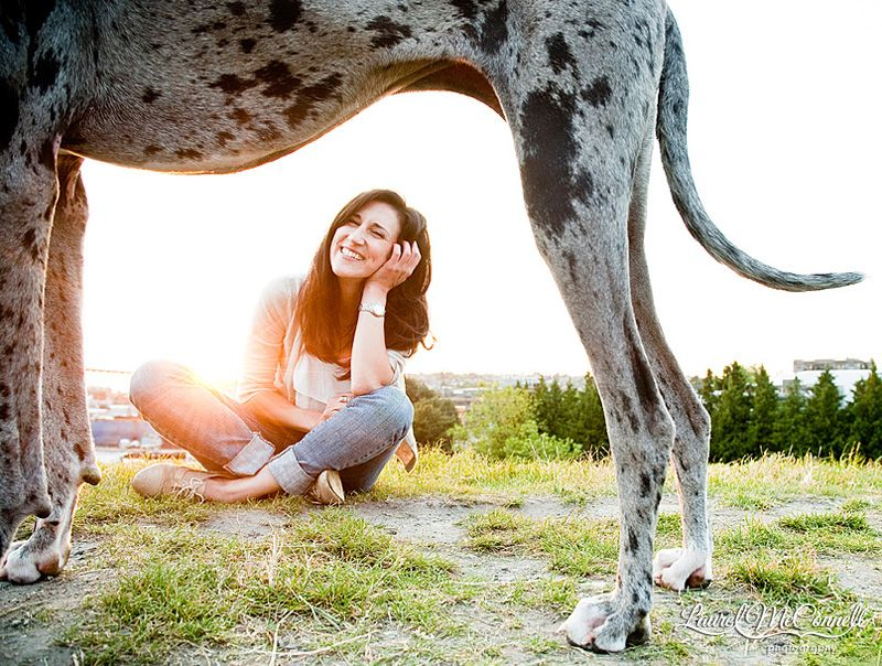 A Photographer And Her Dog Lucy Dog Photography Great Dane Dogs