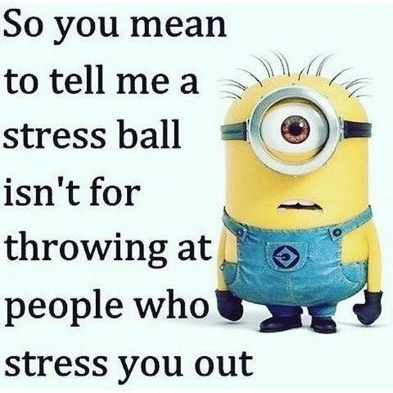 Funny Minion Quotes About Stress: So You Mean To Tell Me A Stress Ball Isn't For Throwing At