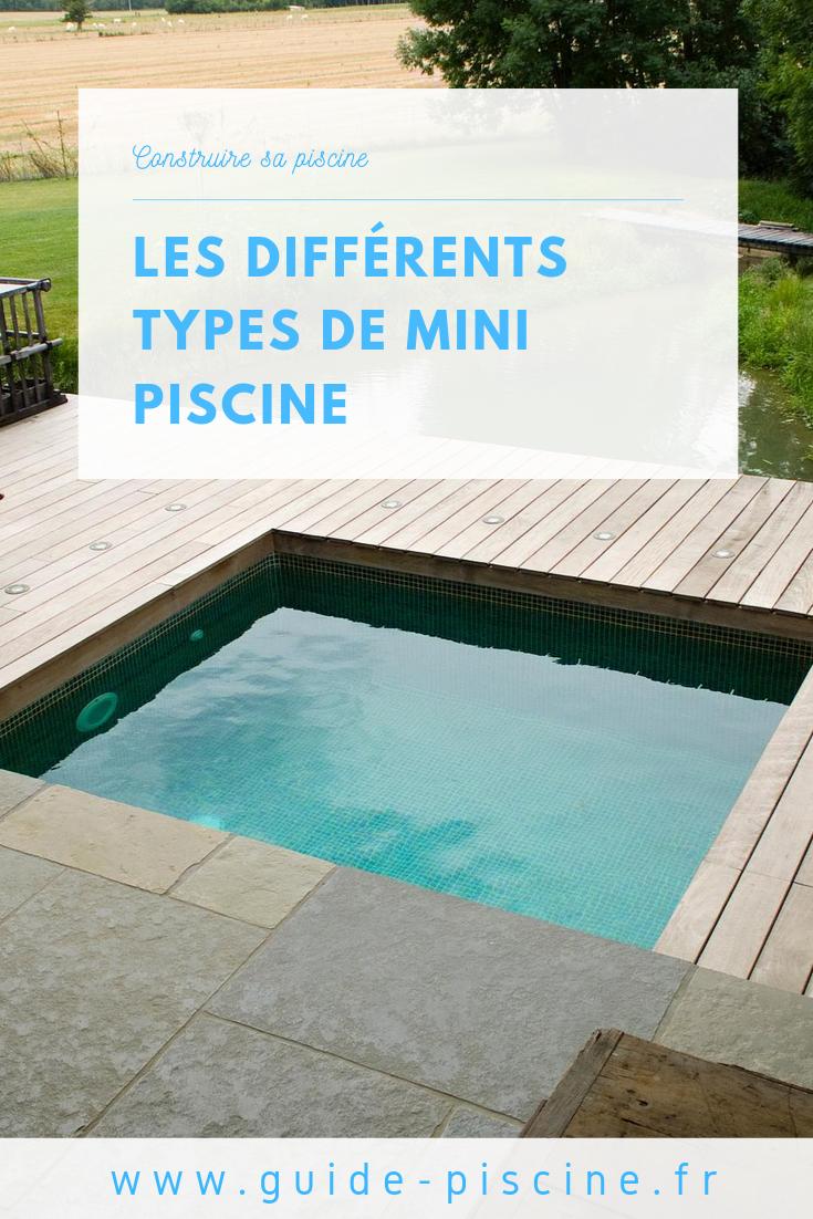 Les Differents Types De Mini Piscine Guide Piscine Fr Mini Piscine Mini Piscine Hors Sol Piscine