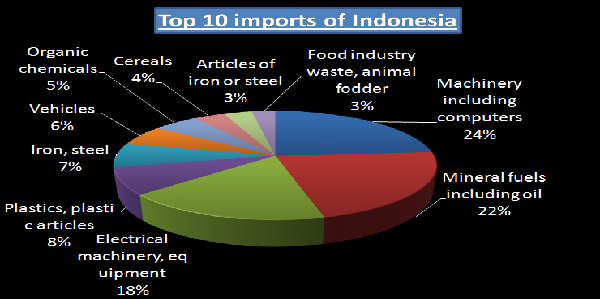 Take a Deep Glance on the Top Imports of Indonesia with
