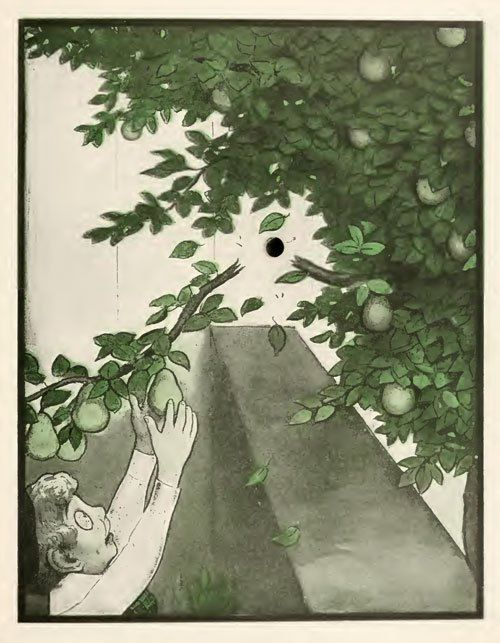 The Hole Book: Illustrated by Peter Newell (1908)