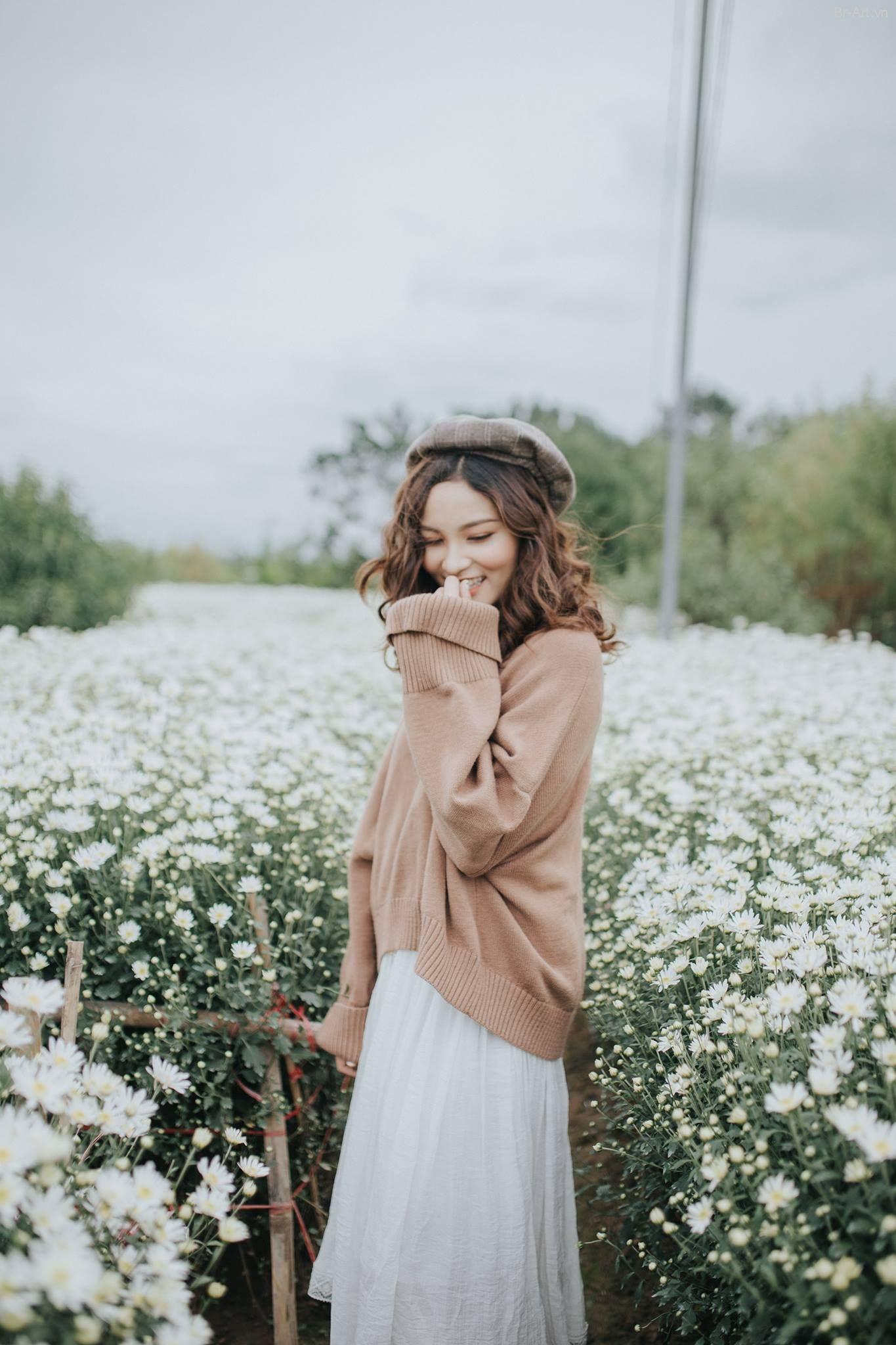 Ý nghĩa của loài hoa cúc họa mi (Có hình ảnh) | Thời trang ...