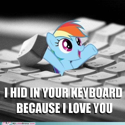 My Little Pony: Friendship is Magic Rainbow Dash in your keyboard