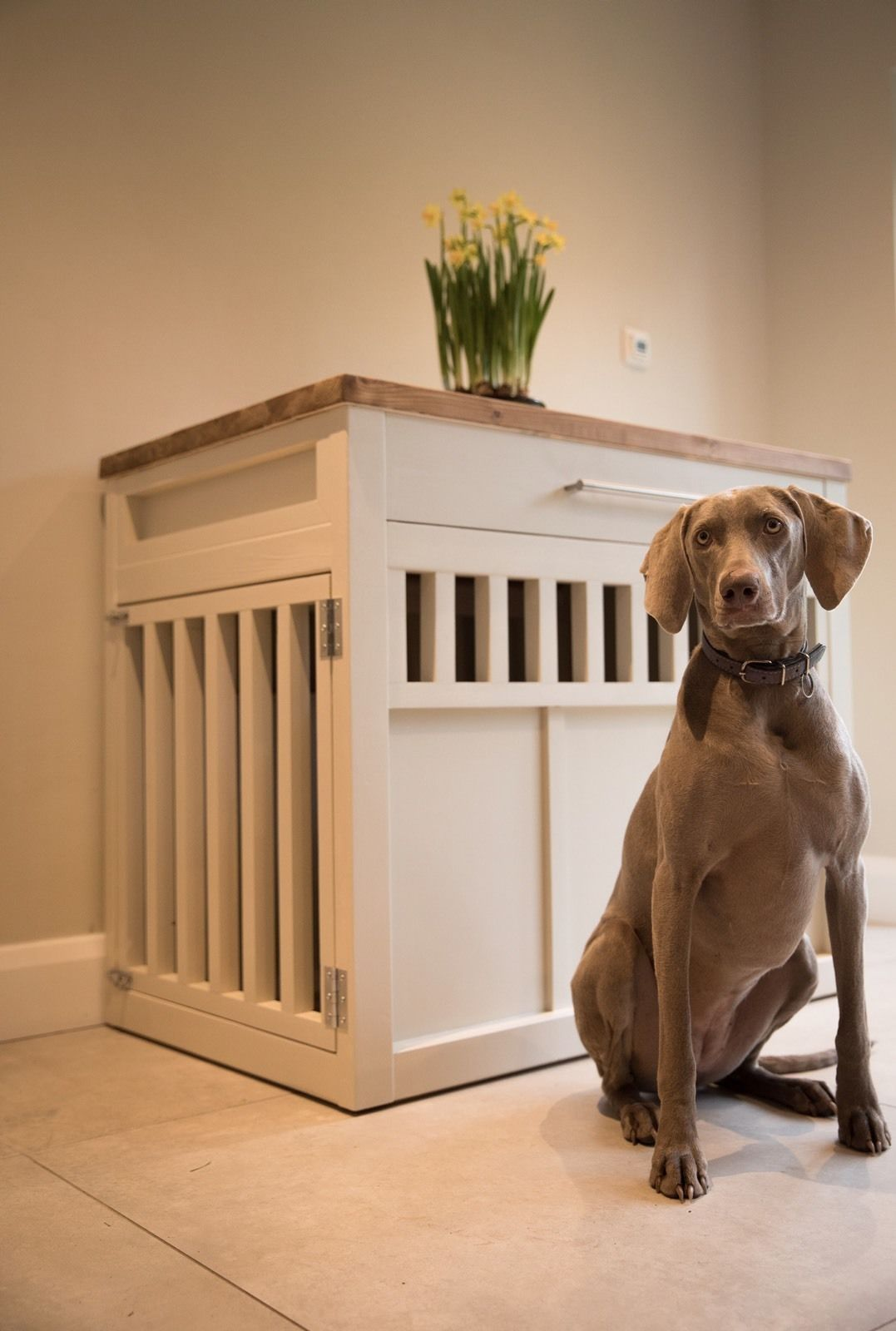 Custom Wooden Dog Crates Wooden dog crate, Custom crates