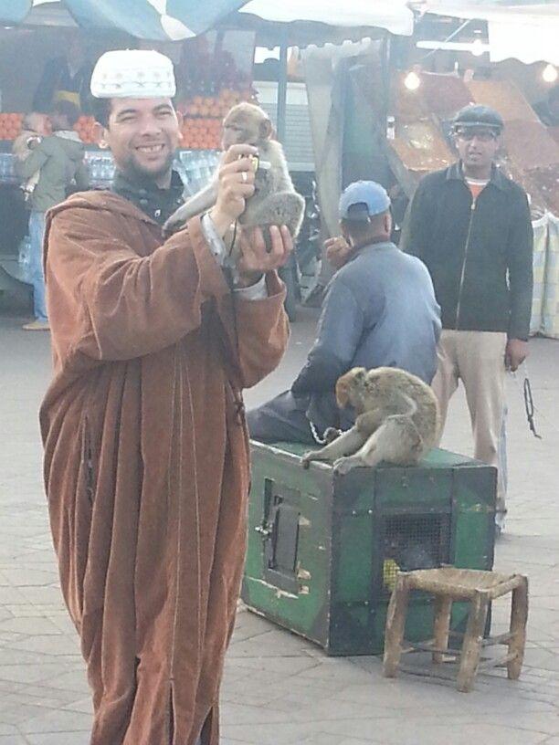 Marrakech. Spring 2013.