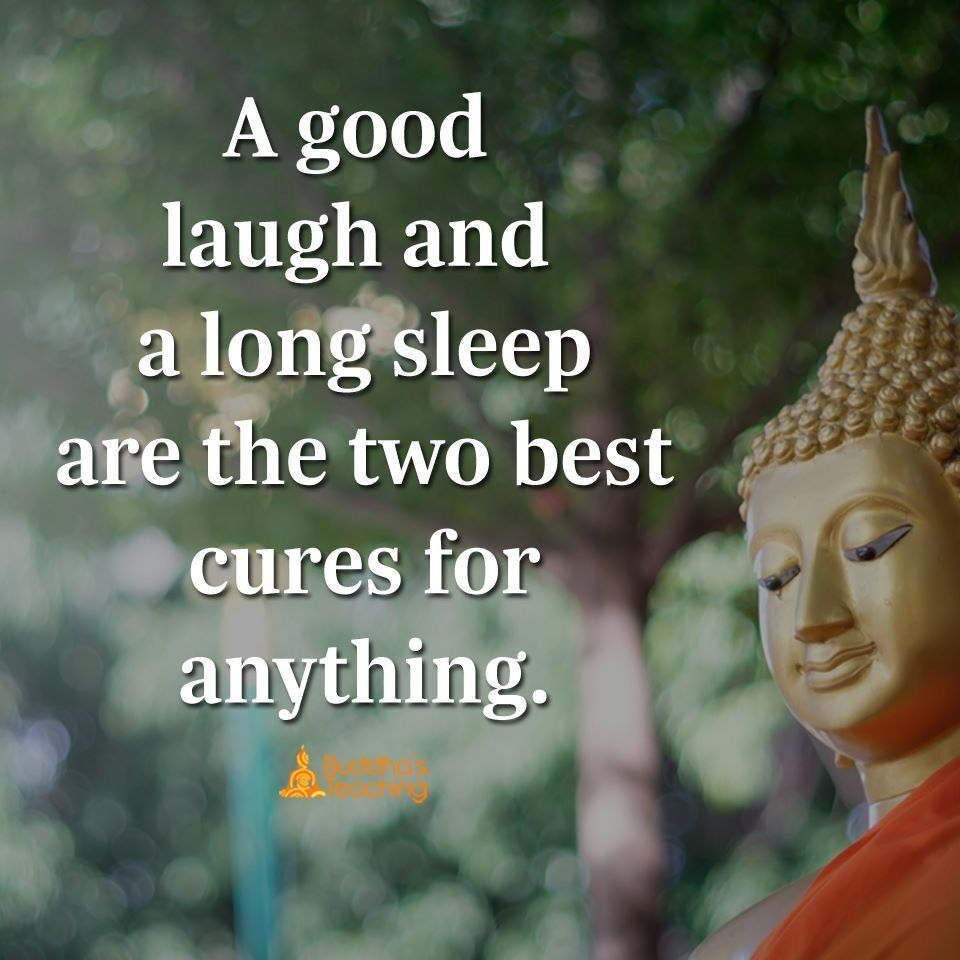 Image result for buddha quotes on sleeping