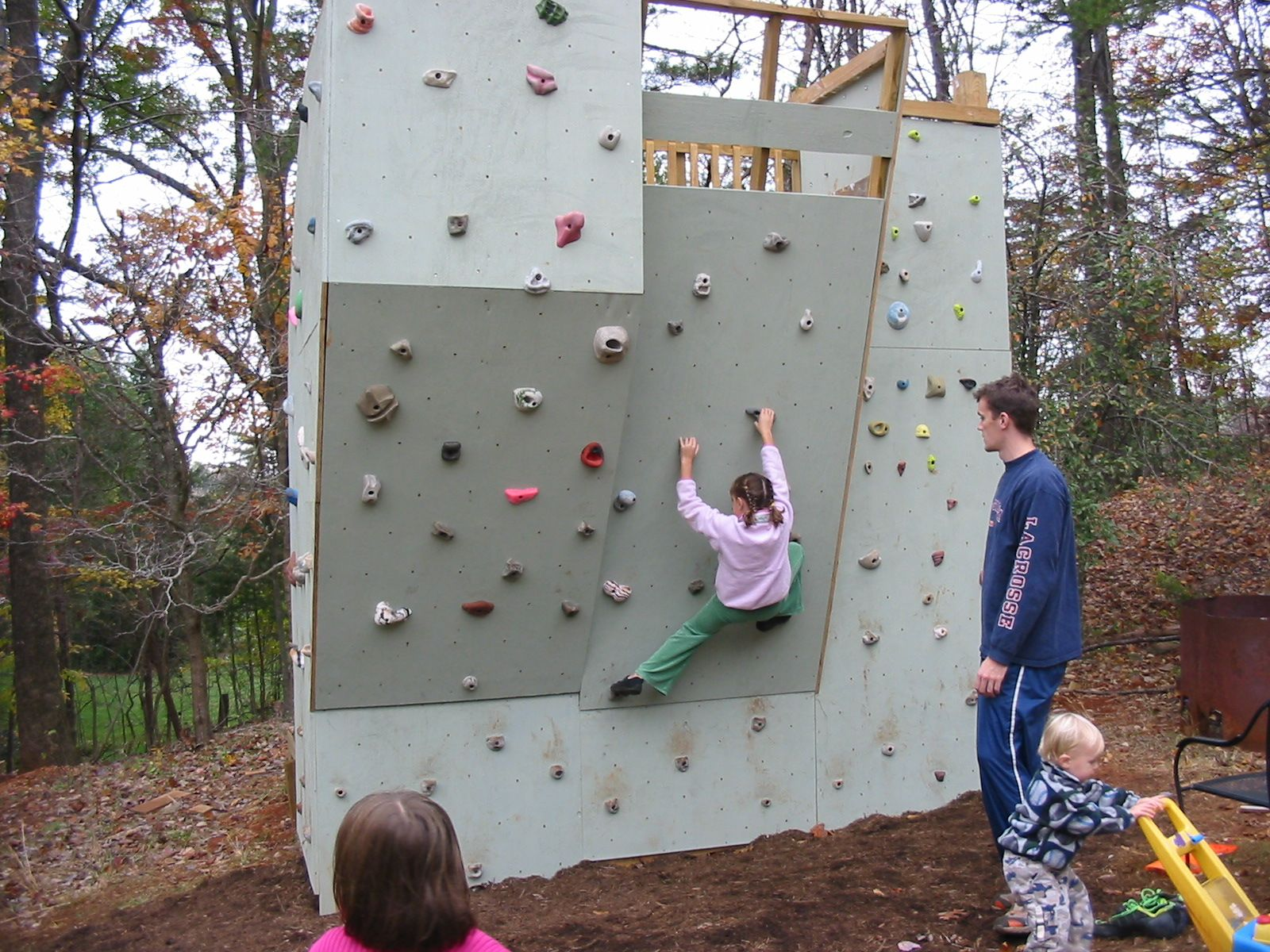 backyard climbing wall - Google Search | Treeforts and ...