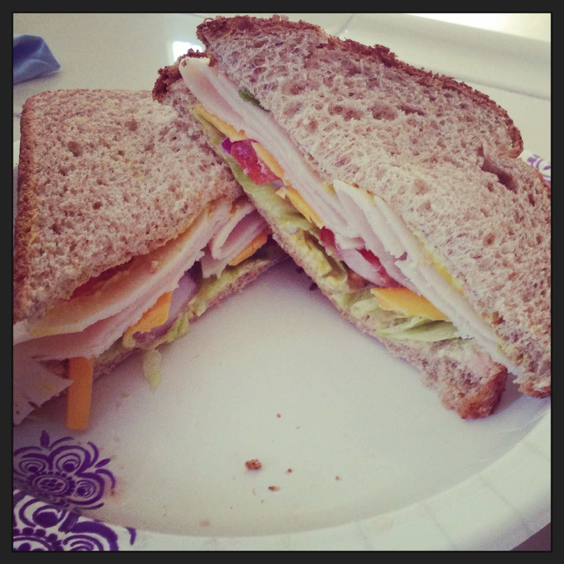 Turkey Sandy!  •tomato •onion •turkey meat •2 slices of whole wheat bread •fat free mayo •mustard