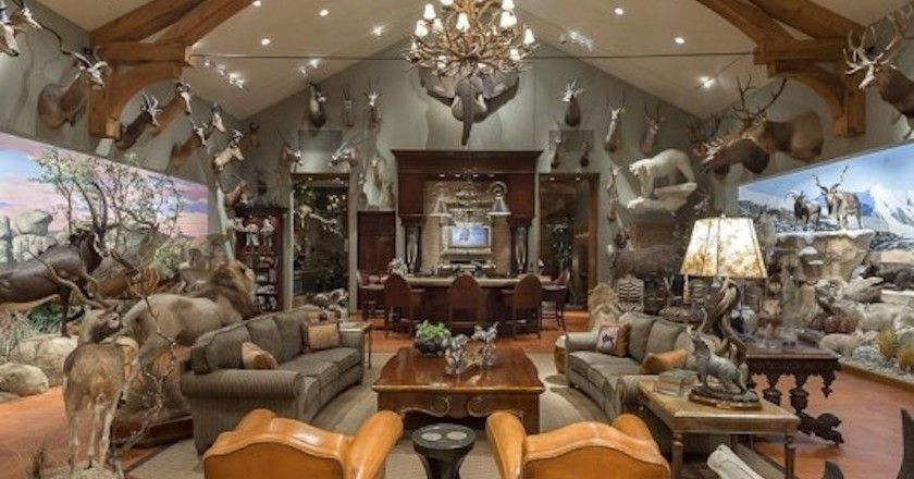these 11 hunters trophy rooms are completely unbelievable trophy rh pinterest com