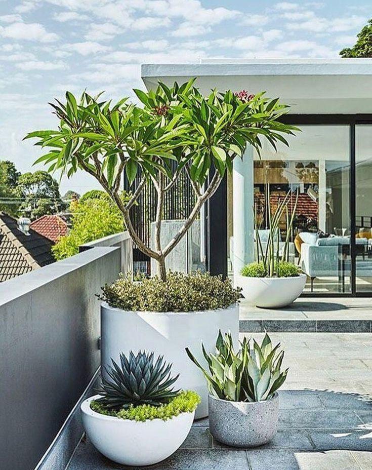 Modern Garden Design Ideas, Including Contemporary Paving, Fences, Plants U0026  Patio Furniture.