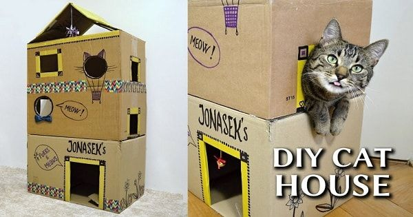 How To Make An Epic DIY Cardboard Cat House Pictures Gallery