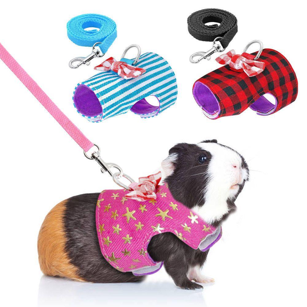Animal Hamster Rabbit Harness Leash Set  Pig Small Walk Lead Random Color