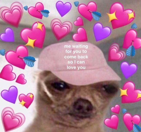 Pin By Ber Fausett On Reaction Memes Cute Love Memes Love Memes Cute Memes