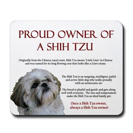 Proud Owner Of A Shih Tzu And Black Lab Both Are Great With