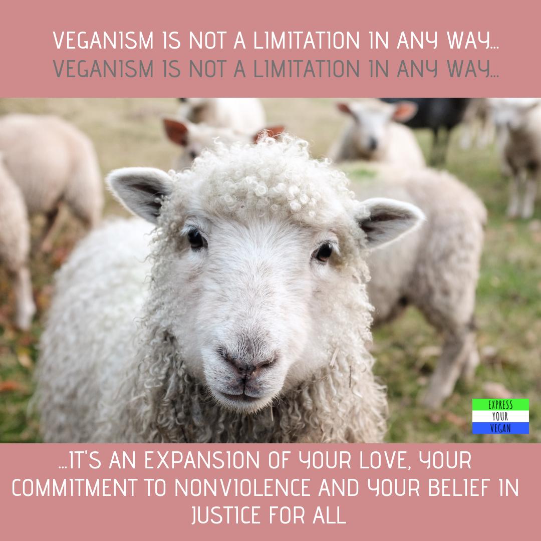 Vegan Quotes #vegans #animalrights #veganquotes #veganquotes Vegan Quotes #vegans #animalrights #veganquotes #veganquotes