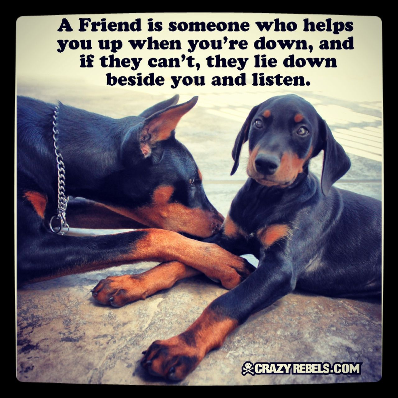 A Friend Is Someone Who Helps You Up When You Re Down And It They