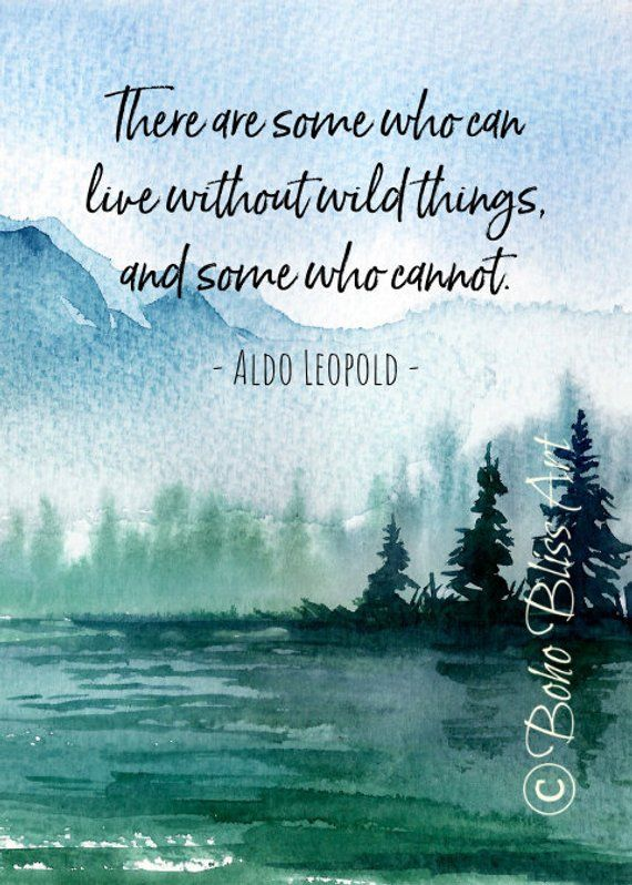Aldo Leopold Quote: There are some who can live in a world without wildness & some who cannot. Natur