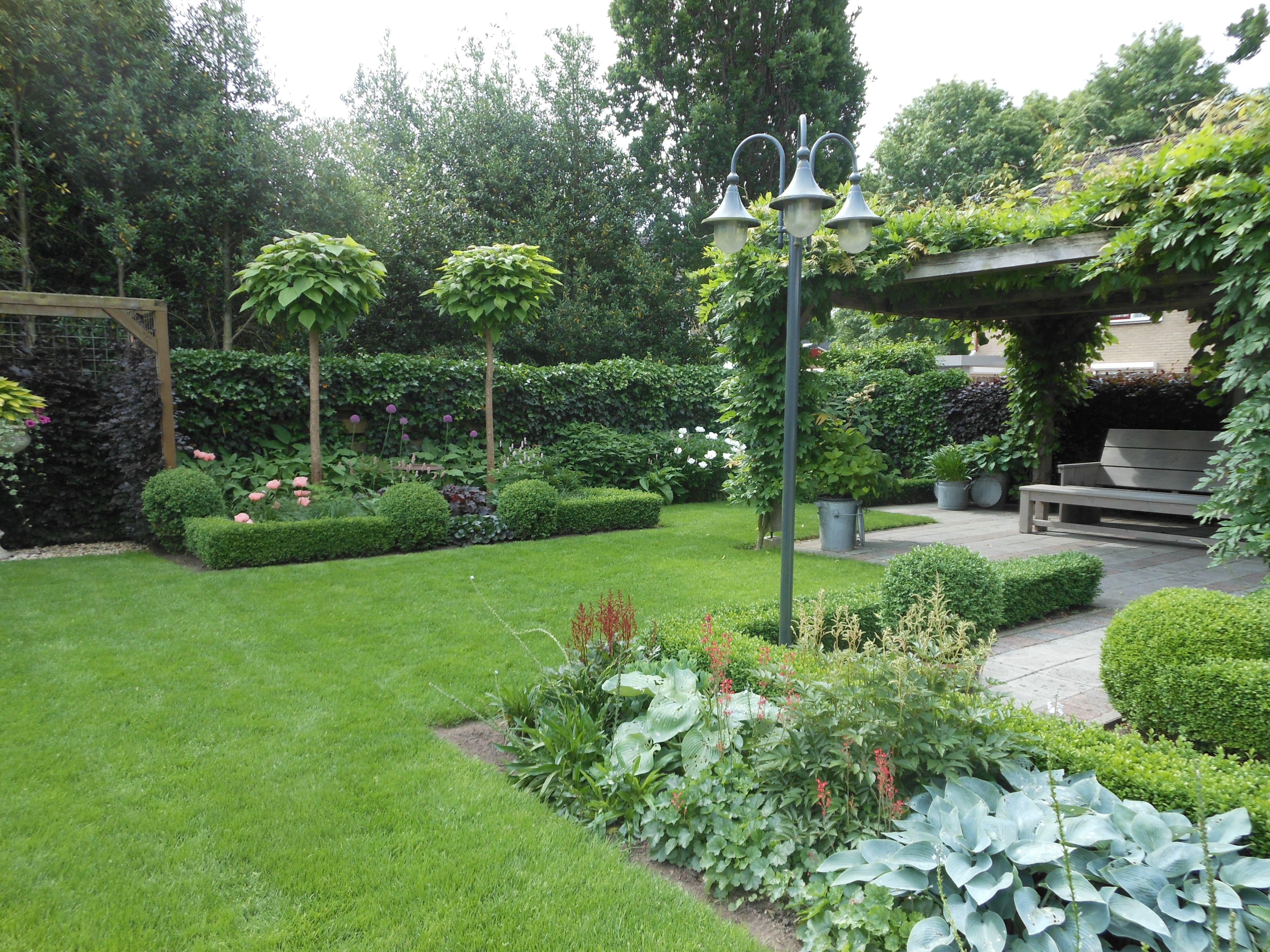 Buxus Tuin Idee n Voor Patio s Graven