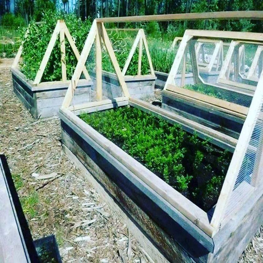29 Easy DIY Pallet Ideas for Vegetable Garden #erhöhtepflanzbeete