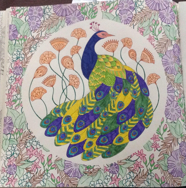 Millie Marotta Dierenrijk Kleurboek Pauw Coloring BooksAdult ColoringColouringColour Therapy
