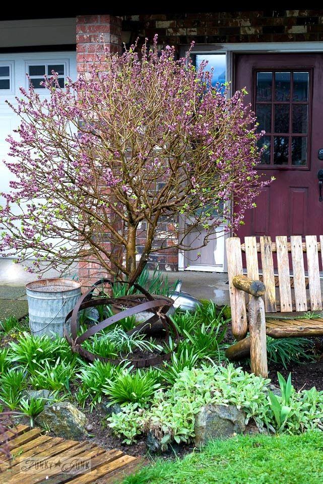 Funky garden junk orb thanks to a broken barrel | Garden junk ...