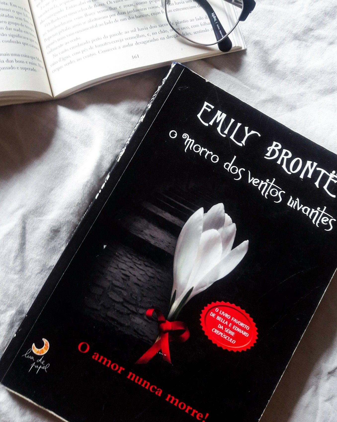 Romance De Epoca Classico Literatura Inglesa Amantes De Livros