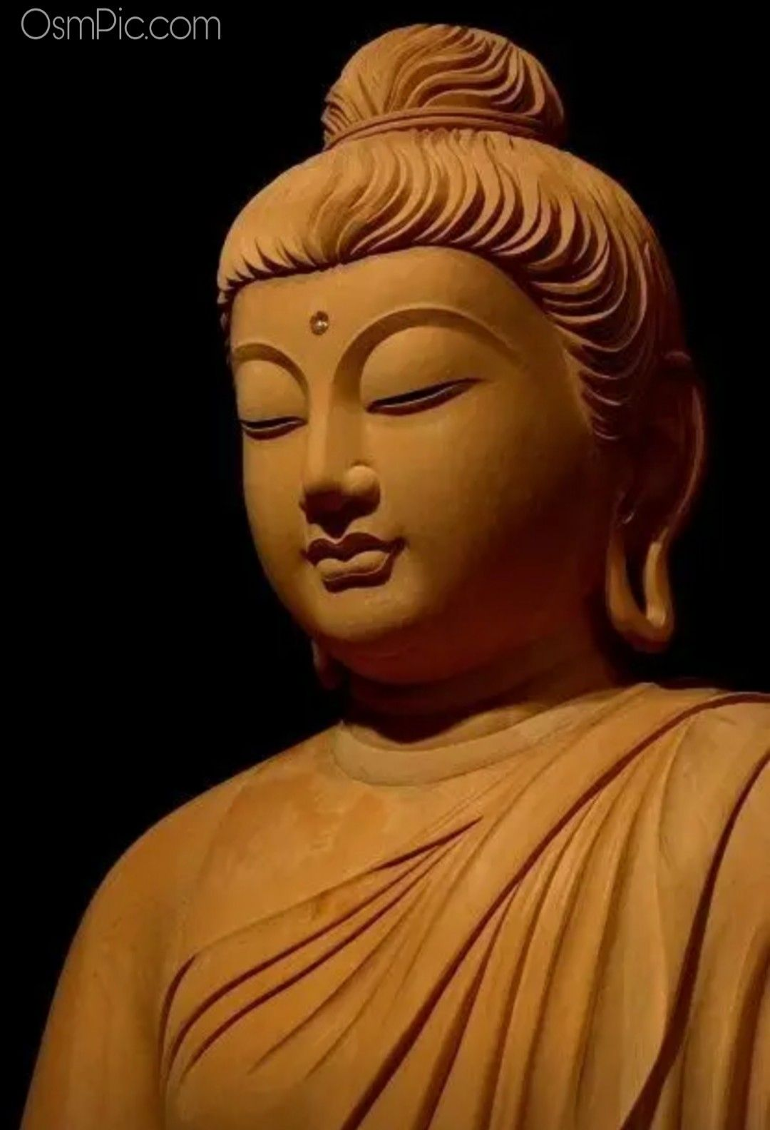 Top 50 Gautam Buddha Images Quotes Photos HD Wallpapers