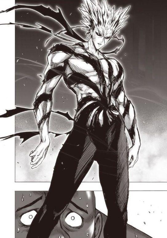 Garou 3 One Punch Man Manga One Punch Man One Punch Man Anime
