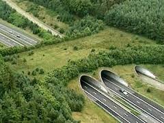 Afbeeldingsresultaat voor wildviaducten