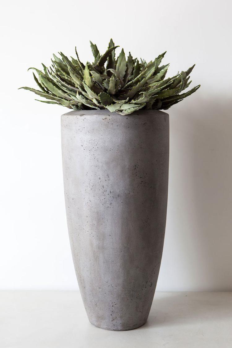 Hoge Bloempotten Voor Binnen.Voorbeeld Plant Voor In Hoge Bloempot Cvety Kusty In 2019 Vaas