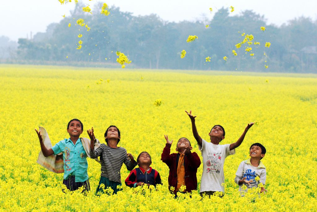 Beauty of bangladesh | Custom paper Academic Writing Service