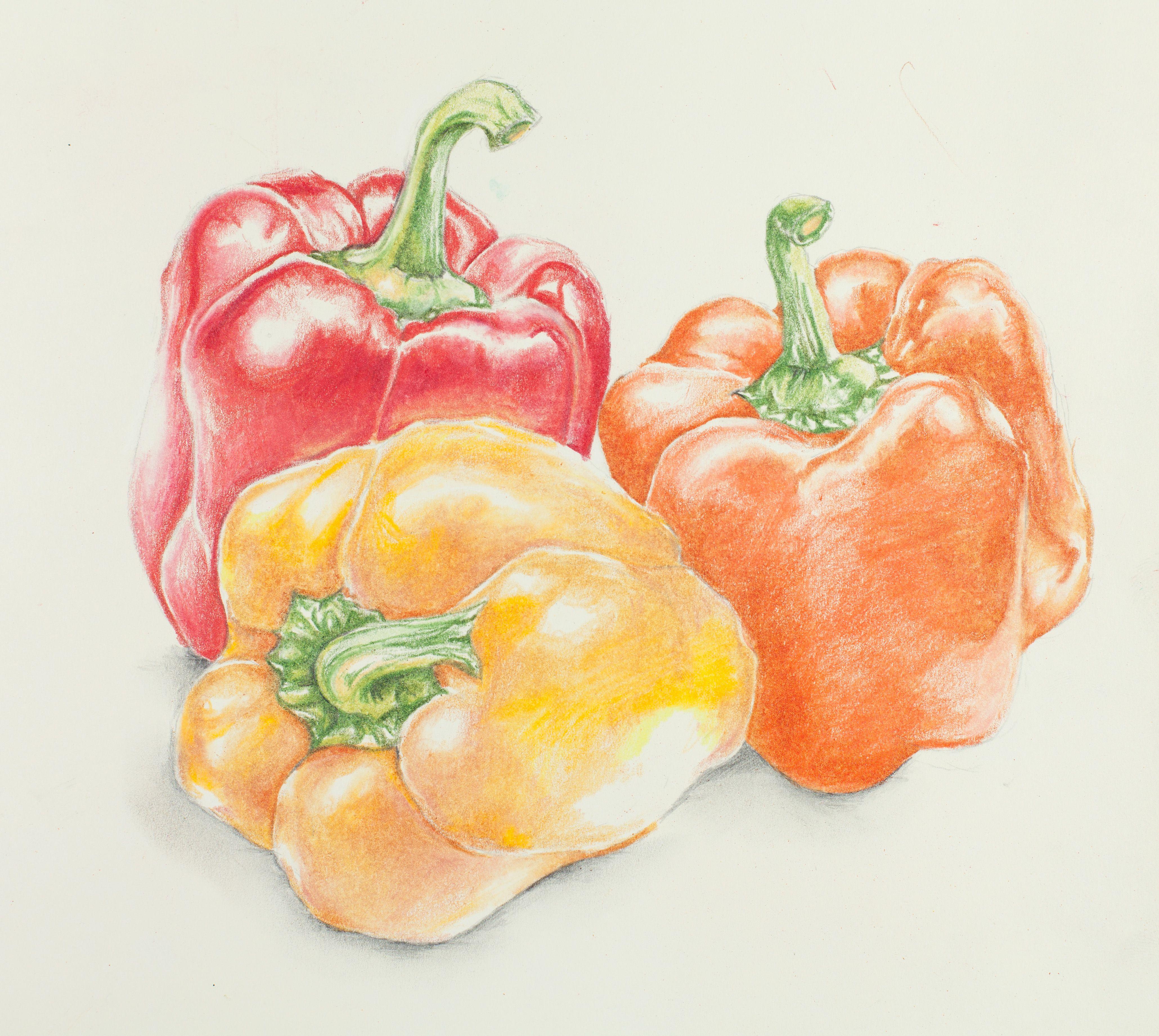 Fruit & Vegetable Still Life – Carrolyn Lakowski ...