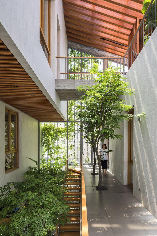Galería de Stepping Park House / VTN Architects – 5