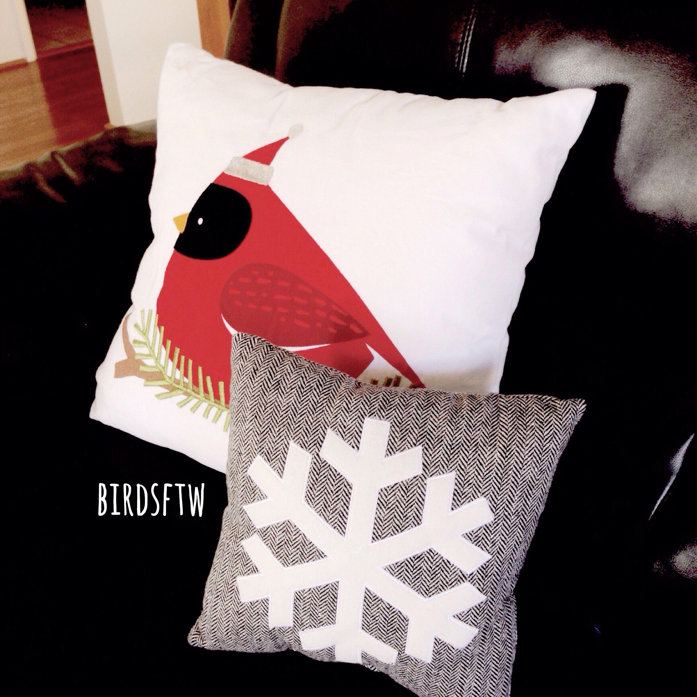I love accent pillows! Cardinal pillow from Target ...